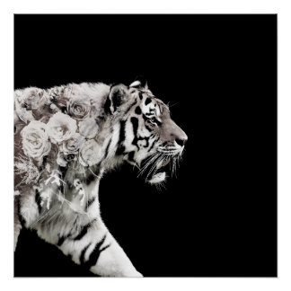 Beautiful Tiger Roses Double Exposure Photo Poster