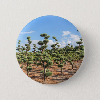 Beautiful topiary shapes in conifers 6 cm round badge