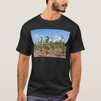 Beautiful topiary shapes in conifers T-Shirt