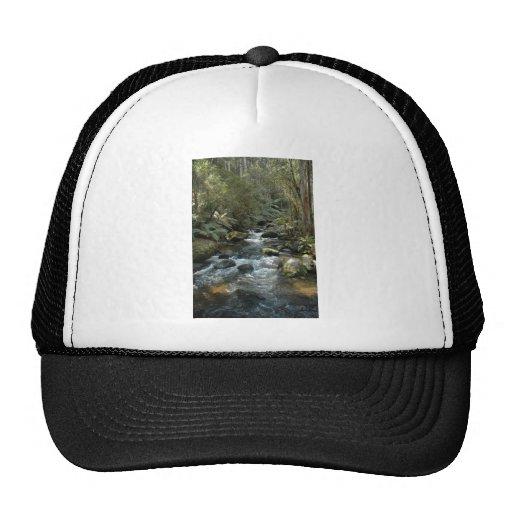 Beautiful Toroonga River In Vic At Australia Hat
