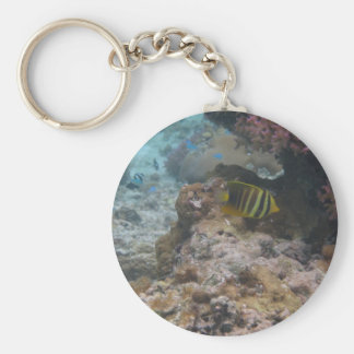 Beautiful Tropical Butterfly Fish Basic Round Button Key Ring