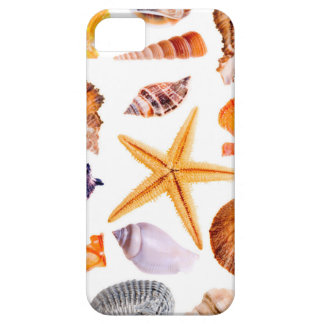Beautiful Tropical Summer Seashells iPhone 5 5S iPhone 5 Cover