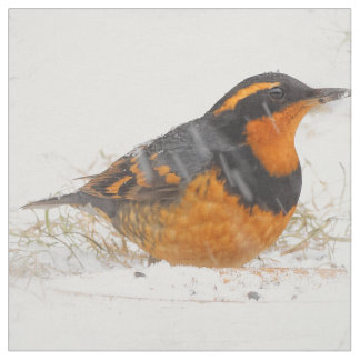 Beautiful Varied Thrush on a Snowy Winter's Day Fabric