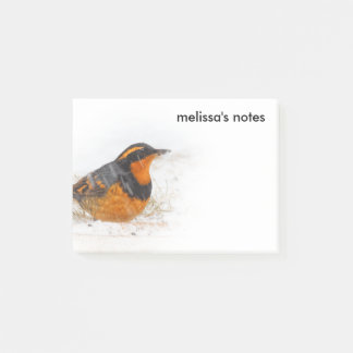 Beautiful Varied Thrush on a Snowy Winter's Day Post-it Notes