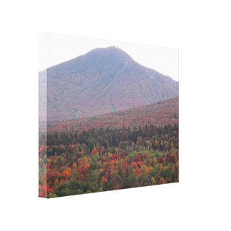 Beautiful Vermont Fall Foliage Canvas Print