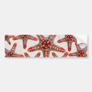 Beautiful Vibrant Red Starfish Sand Ocean Sealife Bumper Sticker