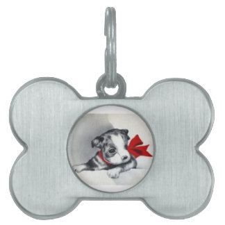 Beautiful Vintage Boston Terrier Puppy Pet Tags