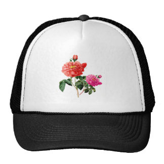 beautiful vintage botanical red and pink rose mesh hat