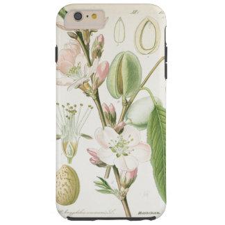 Beautiful vintage floral flower antique botanical tough iPhone 6 plus case