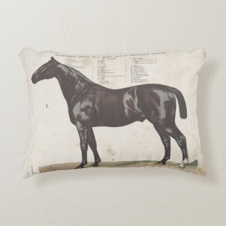 Beautiful vintage horse pillow
