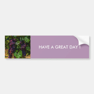 Beautiful vintaget grapes on the vine. bumper sticker