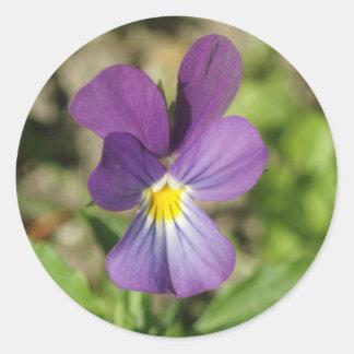 Beautiful violet flower photo sticker