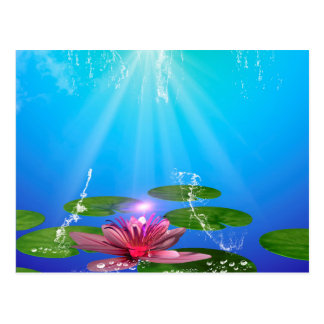 Beautiful water lily with water splash postcard