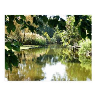 Beautiful water scene postcard