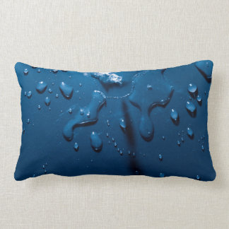 Beautiful water splashes viewed from above lumbar cushion