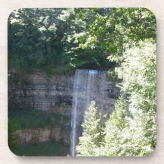 Beautiful Waterfall Coaster