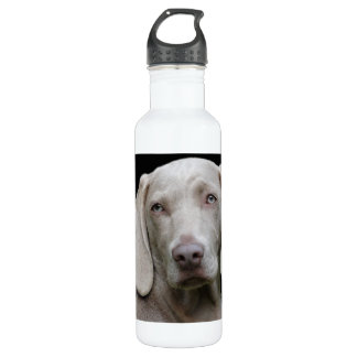 Beautiful Weimaraner Hunting Dog 710 Ml Water Bottle