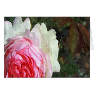 Beautiful White And Pink Rose Greeting Card