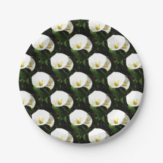 Beautiful White Calla Flowers In Bright Sunlight Paper Plate