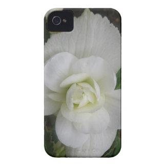 Beautiful White Carnation Blackberry Bold Case