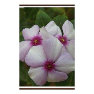 Beautiful White Flower Customised Stationery