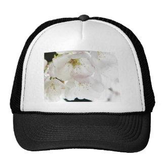 Beautiful White Trucker Hats