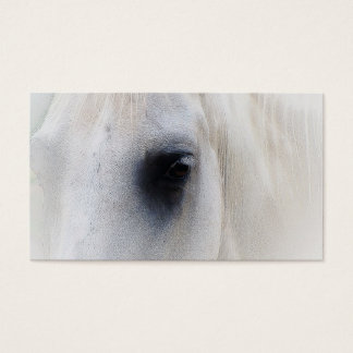 Beautiful White Horse Closeup Business Card