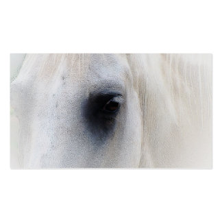 Beautiful White Horse Closeup Pack Of Standard Business Cards