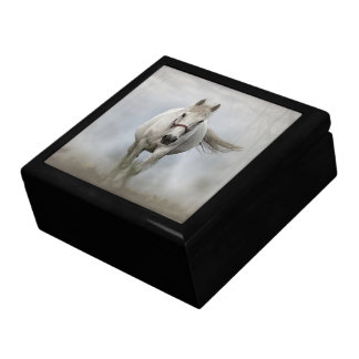 Beautiful white horse in mist gift box