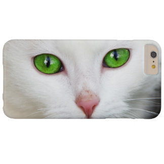 Beautiful white kitty cat kitten animal lover barely there iPhone 6 plus case