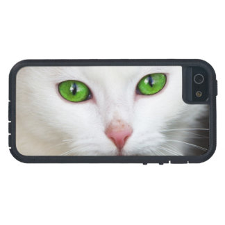 Beautiful white kitty cat kitten animal lover case for the iPhone 5