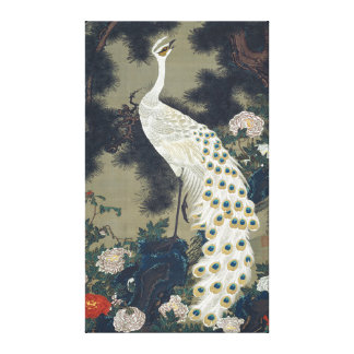 Beautiful White Peacock Japanese Canvas Print