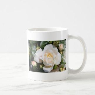 beautiful white rose flower. love and romance coffee mug