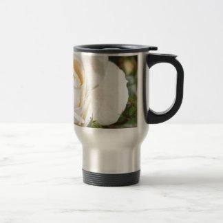 beautiful white rose flower. love and romance coffee mugs