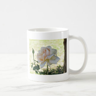 Beautiful white rose flower mug