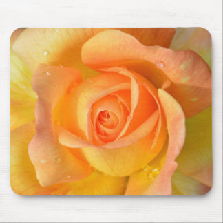 Beautiful White Rose Mouse Pad
