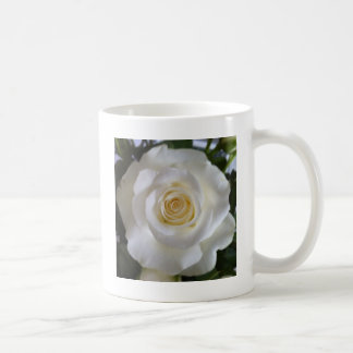 Beautiful White Rose Mug