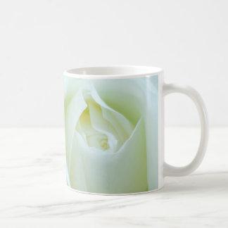 Beautiful White Rose Photo Coffee Mugs