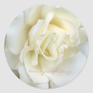 Beautiful white rose small sticker