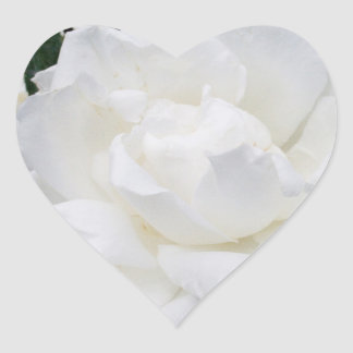 Beautiful White Rose Heart Stickers