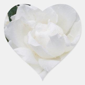 Beautiful White Rose Heart Stickers
