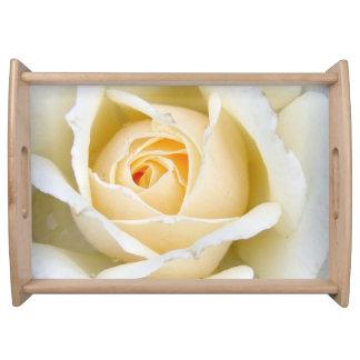 Beautiful White Rose Food Tray