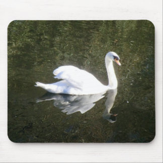 Beautiful White Swan Reflecting On The River Mouse Pad