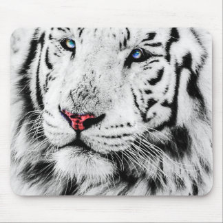 Beautiful White Tiger Portrait Mouse Pad