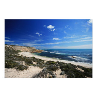 Beautiful Wild Coastline Poster