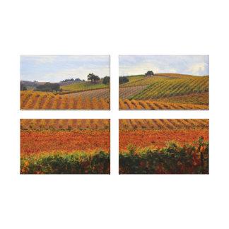 Beautiful Wine Country Autumn Vineyard Tuscan Art Canvas Print