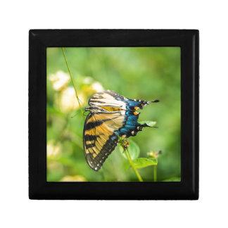 Beautiful Yellow Butterfly Gift Box