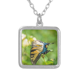 Beautiful Yellow Butterfly Silver Plated Necklace