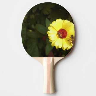 Beautiful yellow flower with small bee ping pong paddle