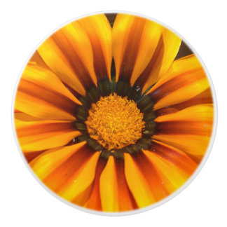 Beautiful Yellow Gazania Ceramic Knob